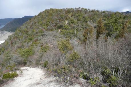 観音山からエビ山