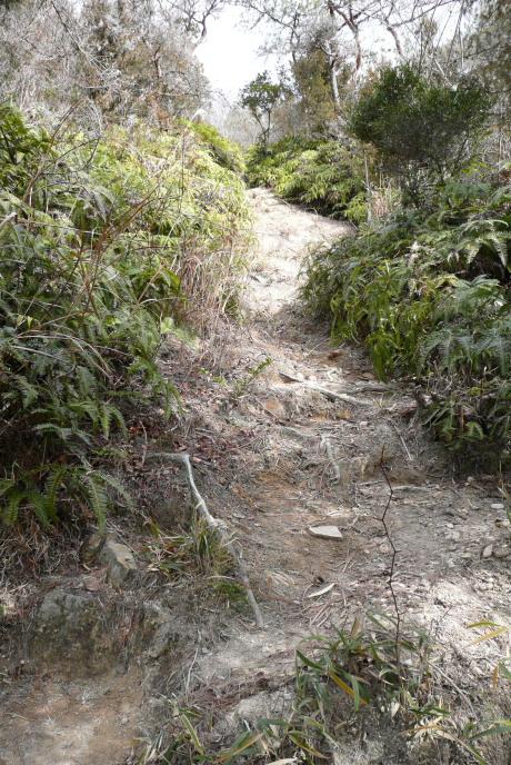 エビ山の急登