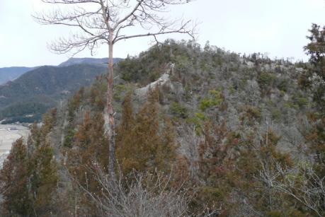 エビ山から岩山