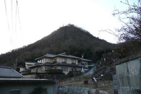 和気富士を見上げる