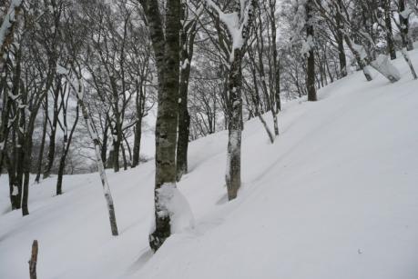 雪の深い尾根下