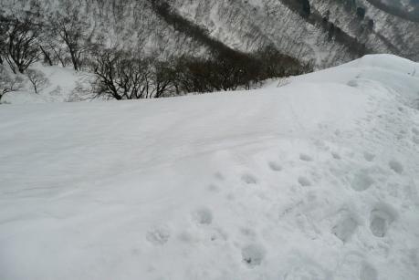 急傾斜の斜面下