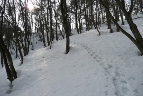 夏道への斜面
