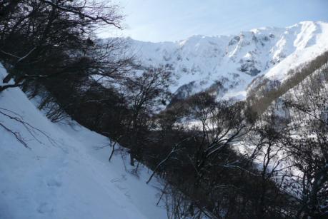 斜面の急な林道歩き