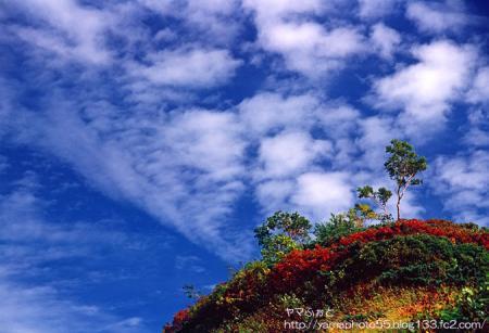 秋の雲ノ平001