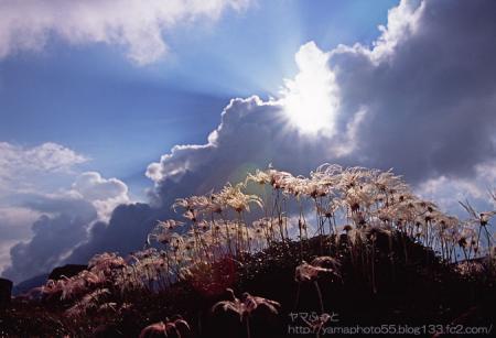 秋の雲ノ平005