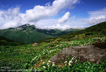 夏の雲ノ平11