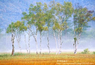 秋の尾瀬01