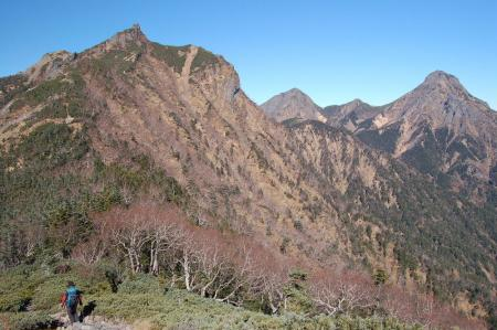 1権現岳へ19