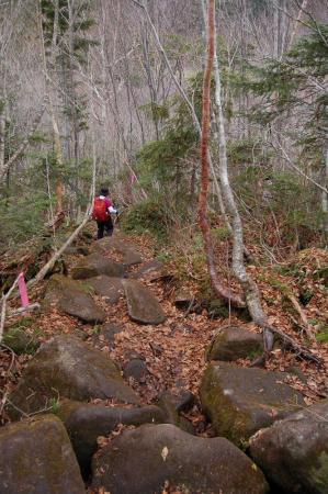 2峰の大池への道28