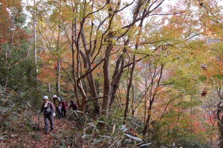 上山ハイキングコース26