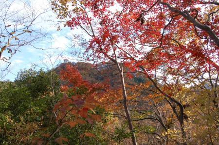 上山ハイキングコース29