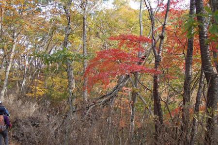 上山ハイキングコース30