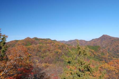 中武生山28