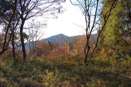 山道から難台山4