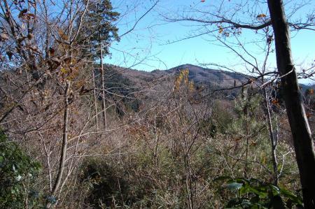 藪道から加賀田山25