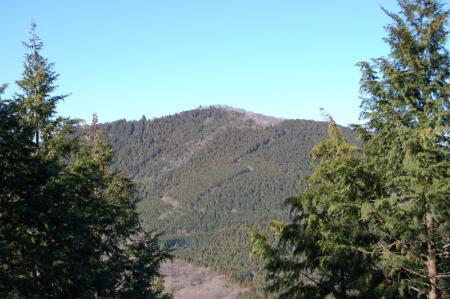 尾根道から吾国山32