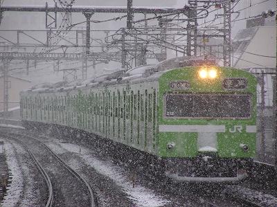yukiya (5)