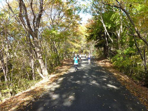 12-2金砂郷登山マラソン
