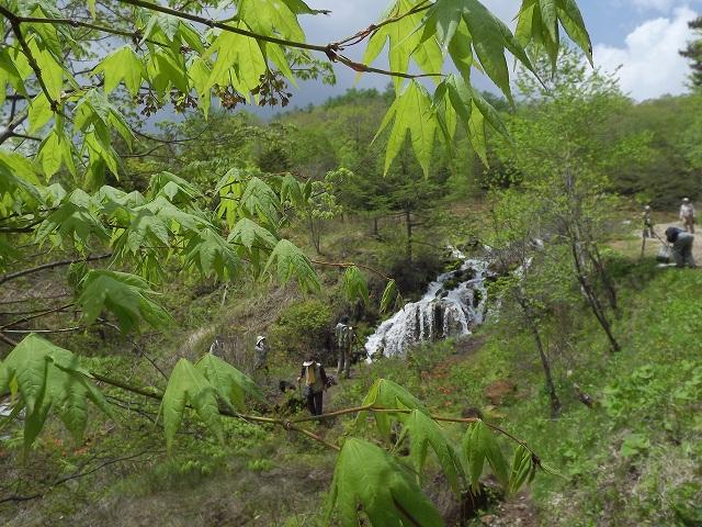 a-igarimasashi2012 311