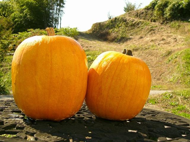 ハロウィンかぼちゃ中之条