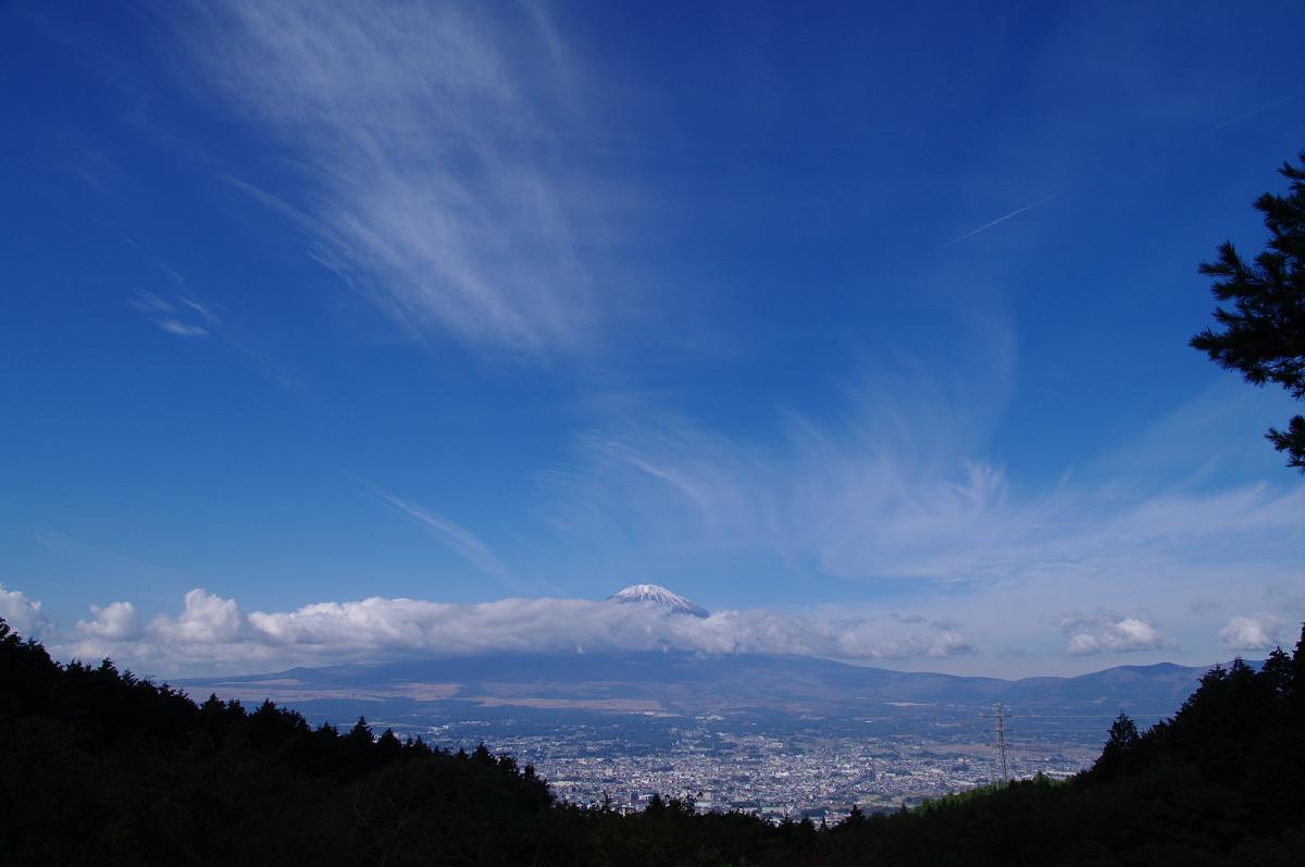 s20111113_1001_YK7_9632.jpg