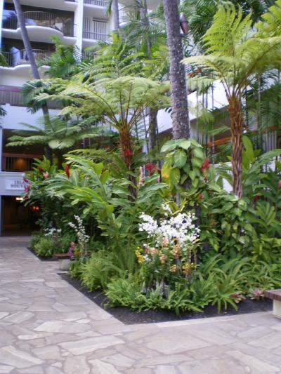 ハワイ2012.7マリオット中庭