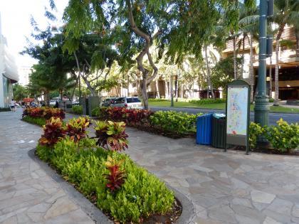 ハワイ2013.7朝のカラカウア大通り