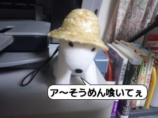 20100919_114715.jpg