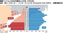 Halo effect-日本とベトナムの年齢別人口分布
