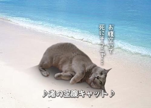にゃ~夏休み9