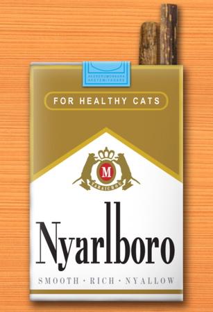 ニャルボロ5