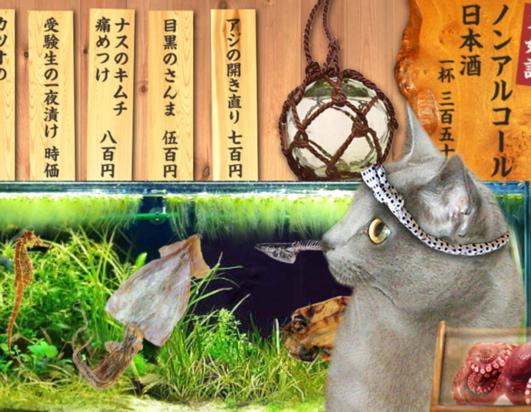 みどり屋寿司篇29