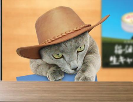 猫畑牧場17
