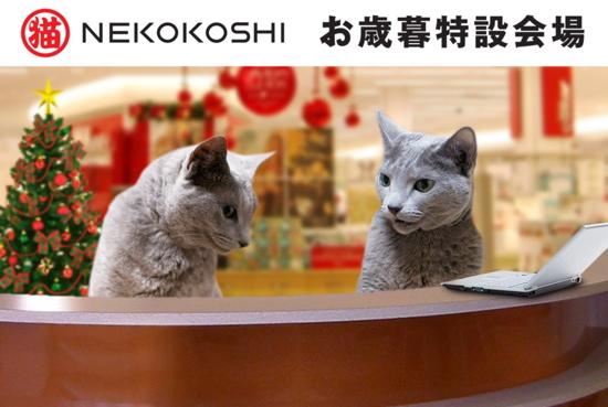 お歳暮猫9