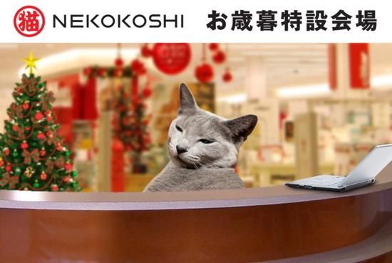 お歳暮猫15