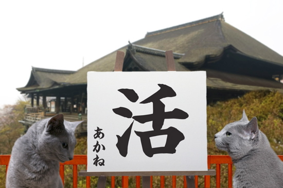 2011漢字4