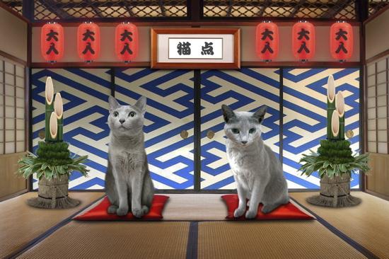 2012猫点2