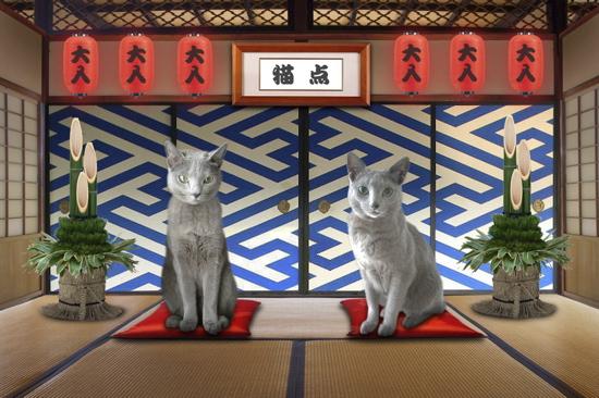 2012猫点1