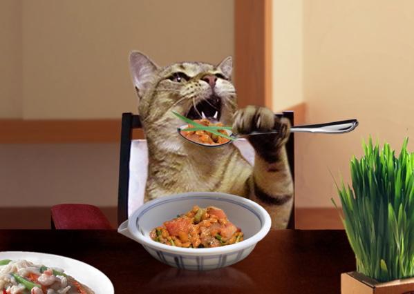 「猫さんの新年会」