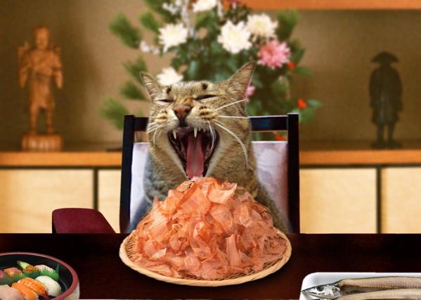 宴席とらちゃん