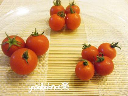 tomatotabekurabe