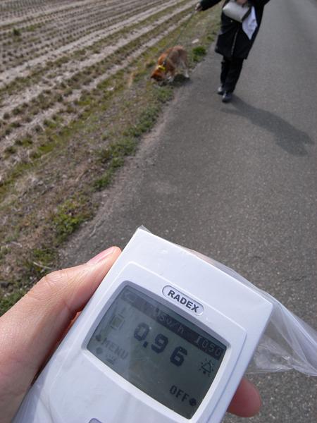 モカ散歩コース放射線量120407