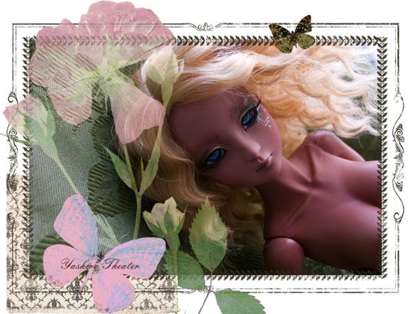 doll20120801001.jpg