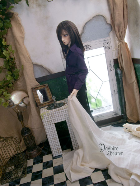 doll20120904001.jpg