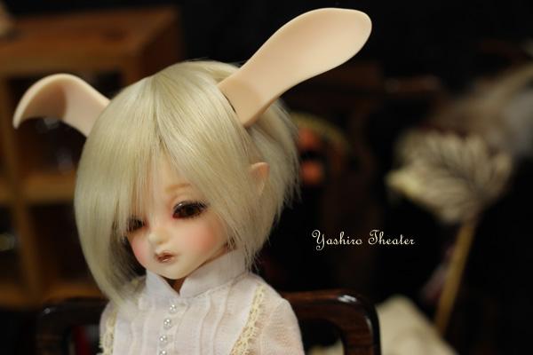 doll20121024000.jpg