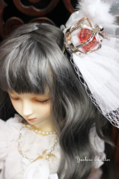 doll20121119005.jpg