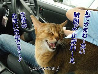 20100813_05.jpg