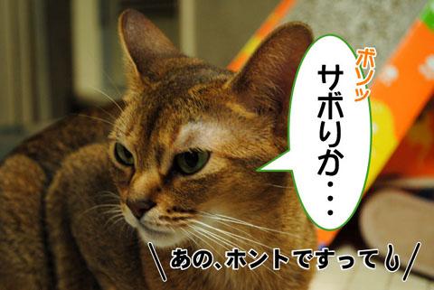 20100820_02.jpg
