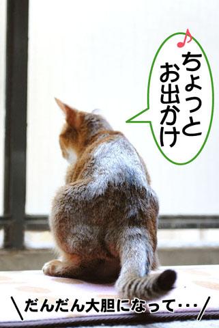 20100918_01.jpg